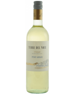 Terre del Noce Pinot Grigio