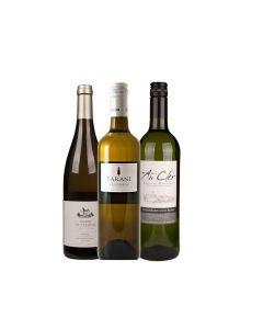 Wijnpakket Frankrijk Wit (3 flessen)