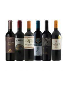 Wijnpakket Malbec (6 flessen)
