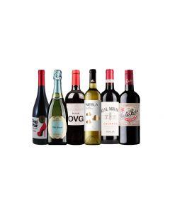 Wijnpakket Spanje (6 flessen)
